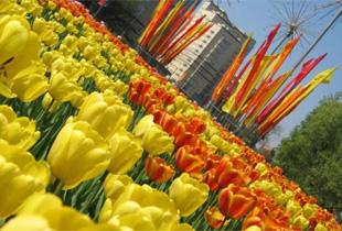 Режим работы компании в майские праздники